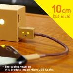 Cheero DANBOARD USB Cable With Lightning Connector (10 cm)