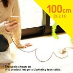 Cheero DANBOARD USB Cable With Lightning & Micro USB Connector (100 cm)