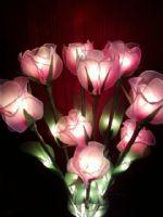 ดอกกุหลาบสีชมพู