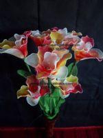 ดอกคัทลียา ส้มแดงขาว