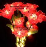 ดอกสีแดงสด