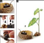 Exo Terra - Plant Dripper Large