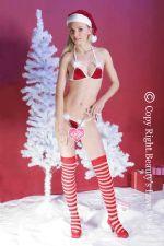 ชุดชั้นในแฟนซีซานต้าสาวเซ็กซี่สีแดง