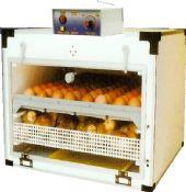 บรรจุไข่ได้ 72 ฟอง (กลับไข่อัตโนมัติ )