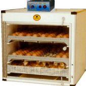บรรจุไข่ได้ 144 ฟอง (กลับไข่อัตโนมัติ )