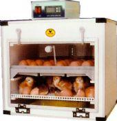 บรรจุไข่ได้ 36 ฟอง (กลับไข่อัตโนมัติ )