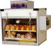 บรรจุไข่ได้ 24 ฟอง (กลับไข่อัตโนมัติ )
