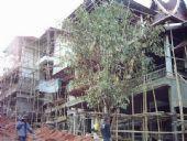 งานวาง ท่อน้ำร้อน โรงแรม ปานวิมาน เชียงใหม่