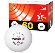 Yasaka training plastic ball