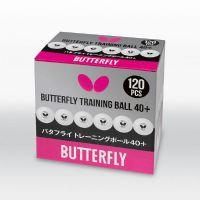 ฺButterfly Training Ball(120Balls)