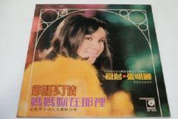 เพลงจีน 28