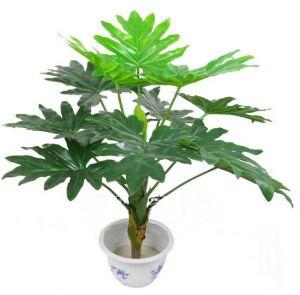 ของตกแต่งบ้าน : ต้นไม้ประดิษฐ์ Taro