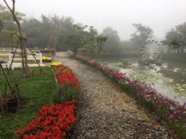 ฟาร์มแกะ สวนดอกไม้