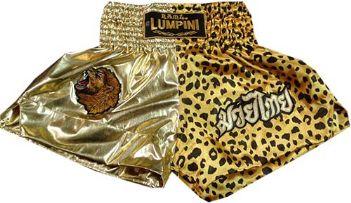 Muay Thai short gold-cheta gold.