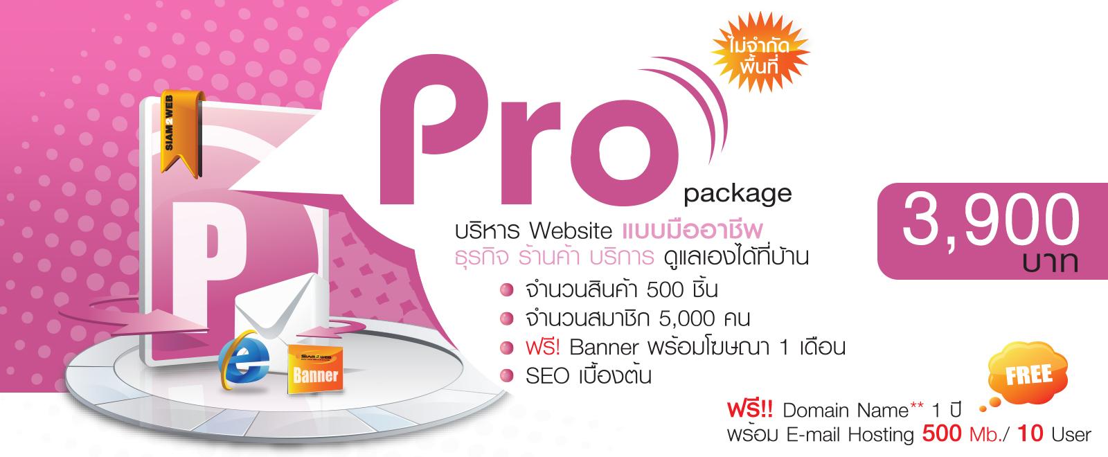 เว็บไซต์สำเร็จรูป Pro Package